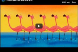 The Carnival of the Animals (Saint-Saëns) - Happy Note!