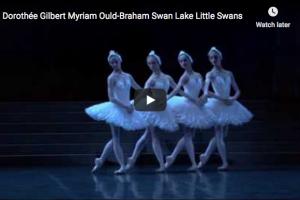Tchaikovsky – Swan Lake – Danse Des Petits Cygnes