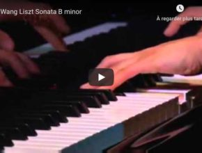 Liszt - Piano Sonata in B Minor - Wang, Piano