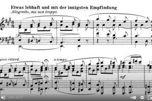 Beethoven – Piano Sonata No. 28 – Vladimir Horowitz