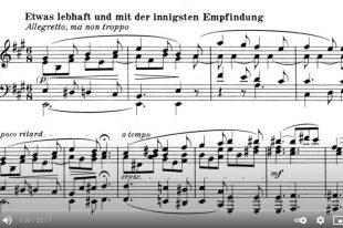 Beethoven - Piano Sonata No. 28 - Vladimir Horowitz