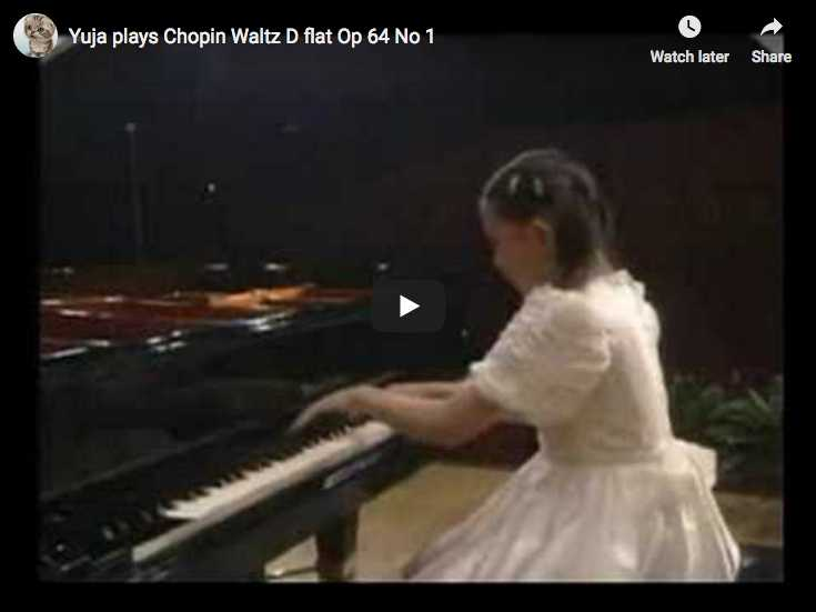 Chopin - Valse No. 6 du Petit Chien - Wang, Piano